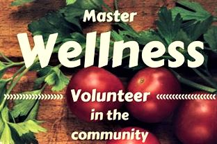 Master Wellness Volunteers Cover